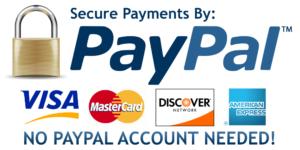 PayPal logo2